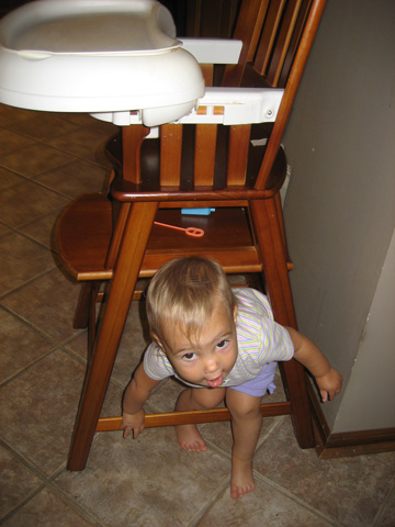 The highchair also provides entertainment.